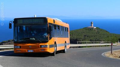 Autobus Isola del Giglio