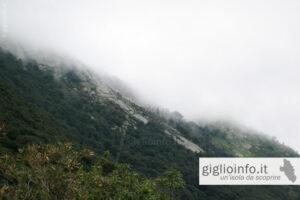 Giglio Castello avvolto nelle nuvole, Isola del Giglio
