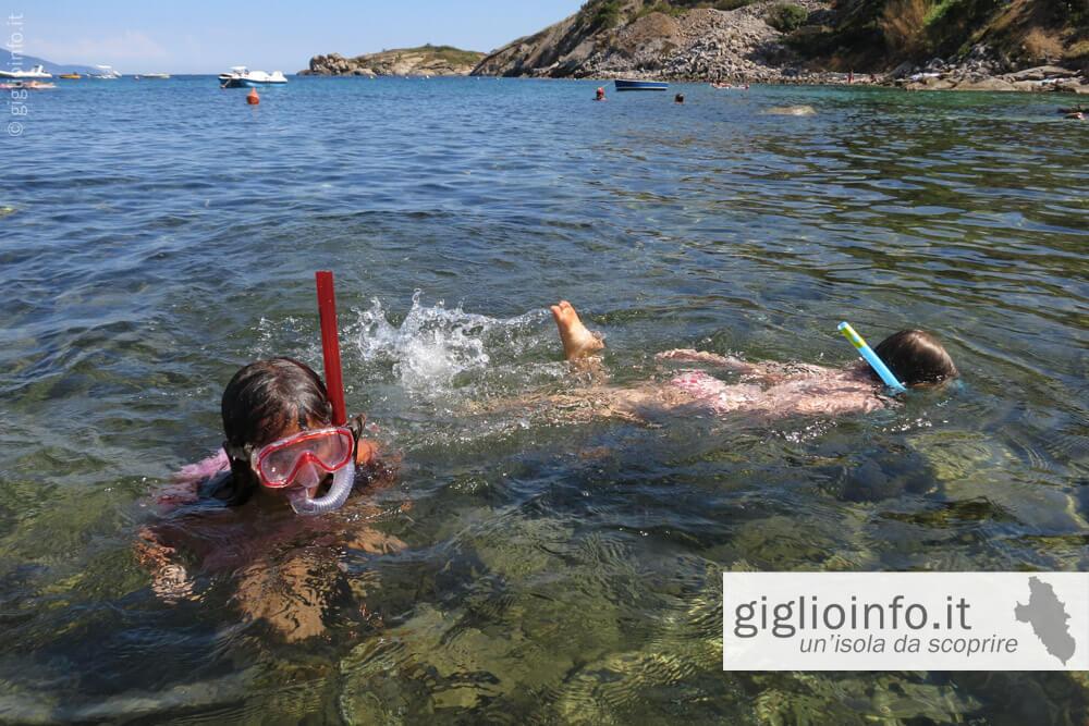 Snorkeling Spiaggia dell'Arenella, Isola del Giglio
