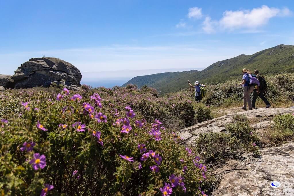 Trekking Isola del Giglio Loc. La Porta