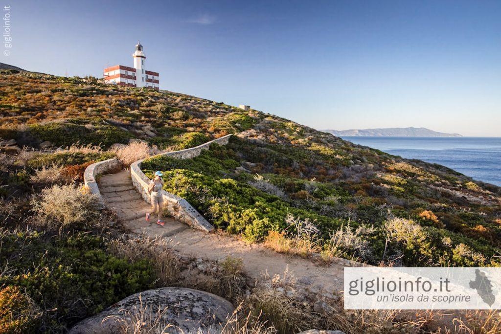Isola del Giglio Faro di Capel Rosso