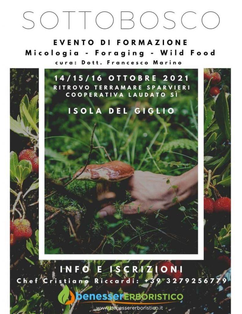 Locandina Evento Isola del Giglio: Sottobosco Terramare Ottobre 2021